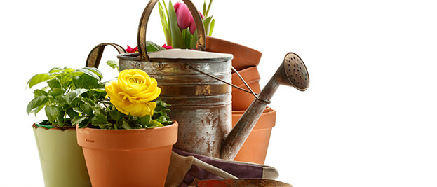 We Offer Landscaping and Artisan Contractor Programs